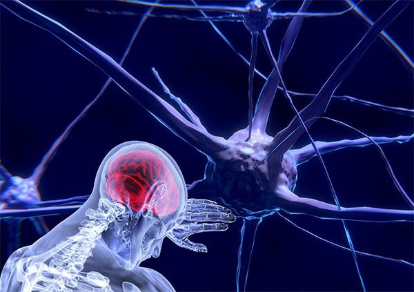 Deep Learning, Deep Neural Networks, Artificial Brain